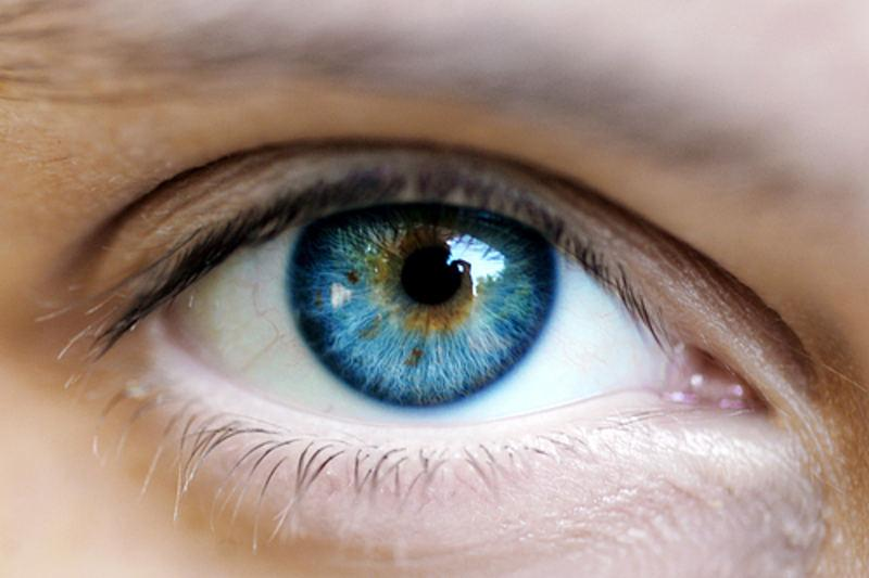 Пища влияет на цвет глаз
